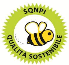 SQNPI sostenibilità in vigna