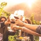 5 Aktivitäten am Gardasee für Liebhaber italienischer Weine