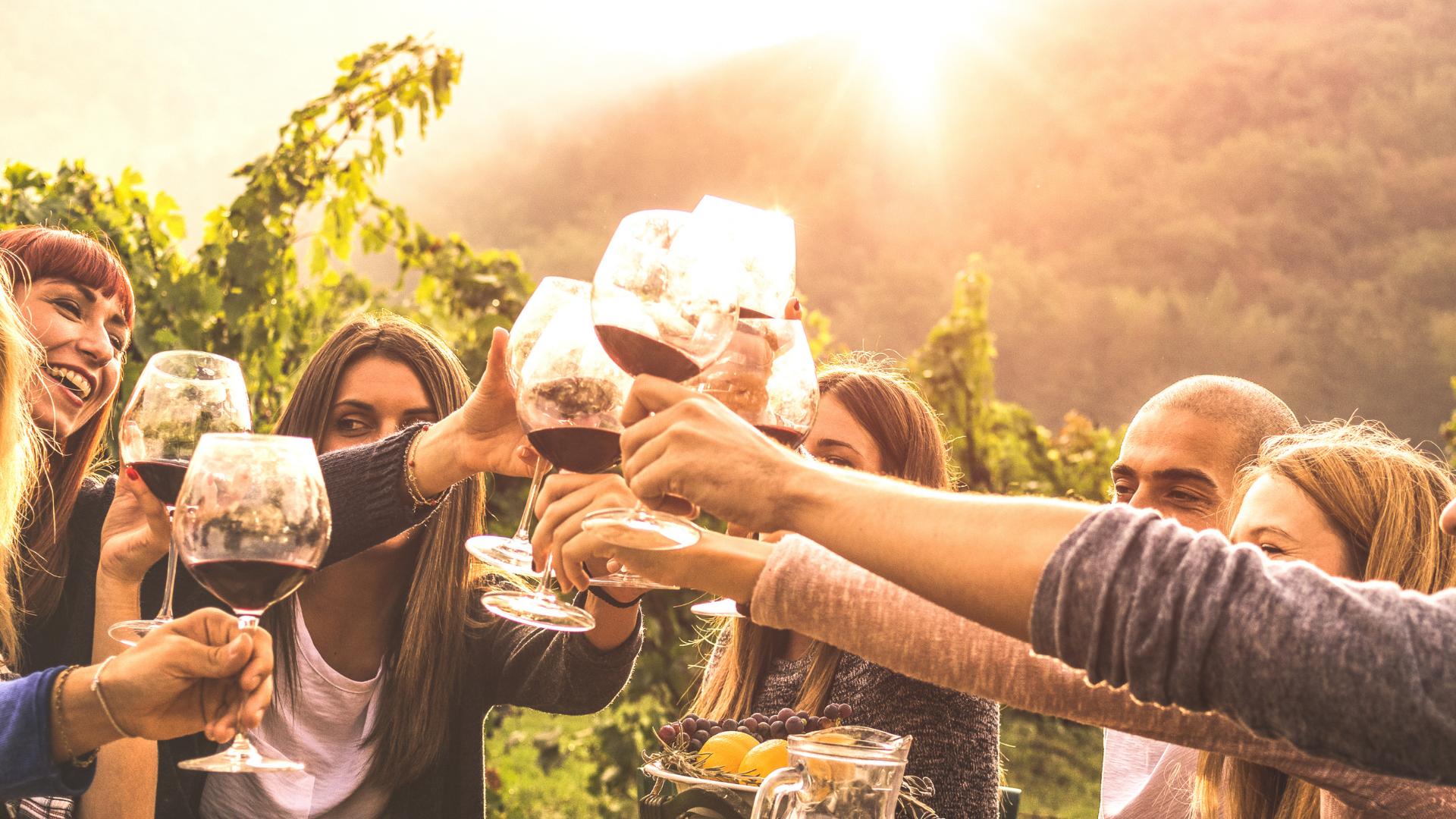 5 Cose da fare al lago di Garda se sei un wine lover